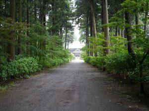 日本寺参道